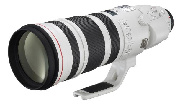 Canon EF 200-400mm f/4L IS Extender Lens