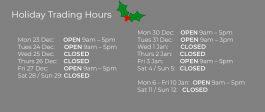 Christmas Hours Camera Hire Alexandria